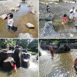 三ッ池公園 水の広場(じゃぶじゃぶ池)